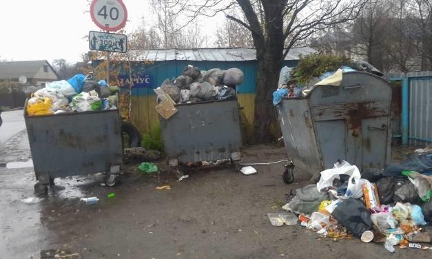 У Броварах переповнені сміттєві баки, фото-1