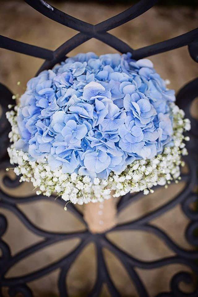 Салон-магазин «Квіти» в Броварах, фото-1