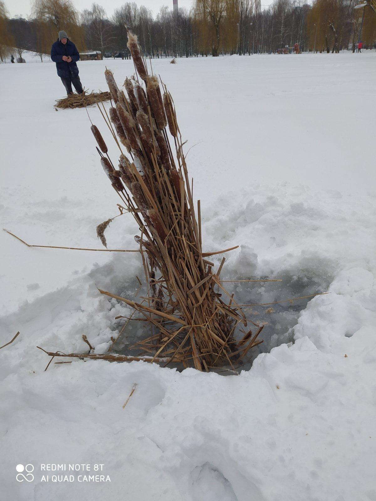 У Броварах рятують рибу в озерах, фото-2